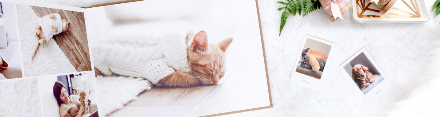 Creating Photobooks for Your Pet.jpg