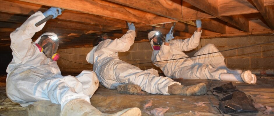 Why You Must Stop Putting Off Crawl Space Repair