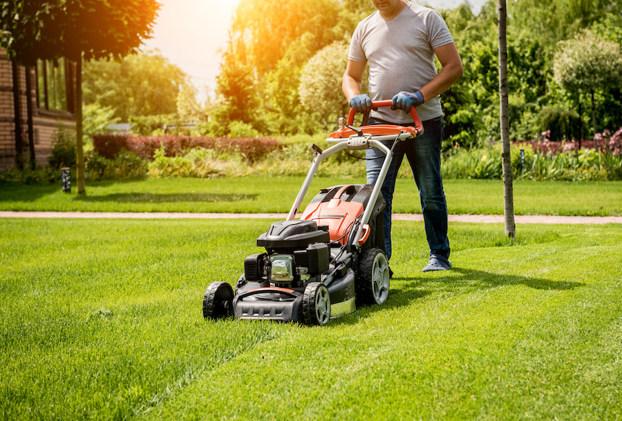 Lawn Care Blog